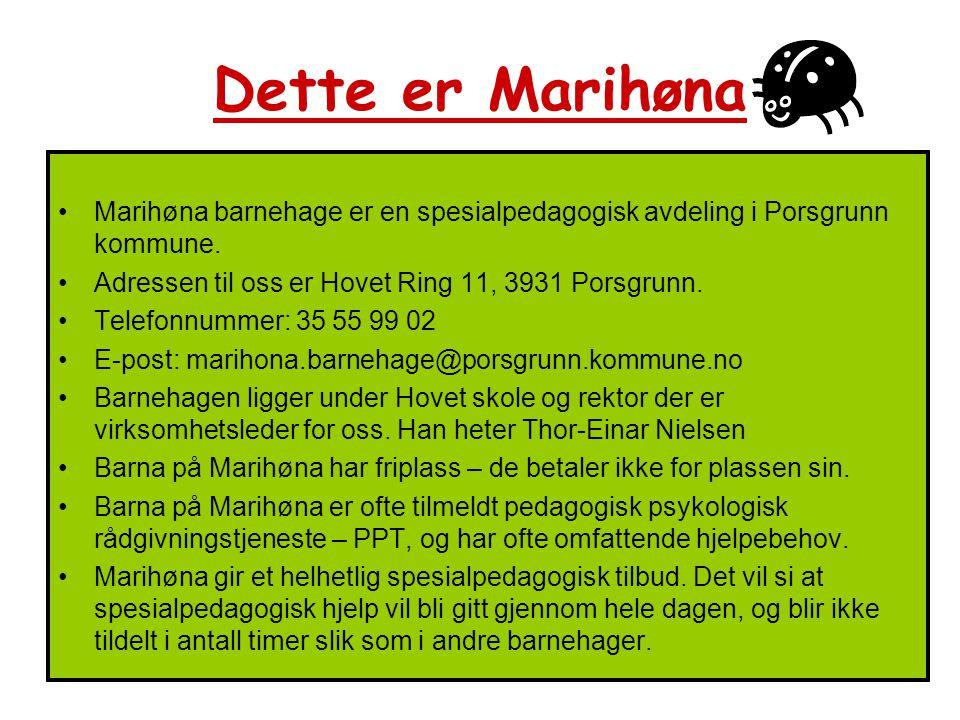 Dette er Marihøna Marihøna barnehage er en spesialpedagogisk avdeling i Porsgrunn kommune. Adressen til oss er Hovet Ring 11, 3931 Porsgrunn.
