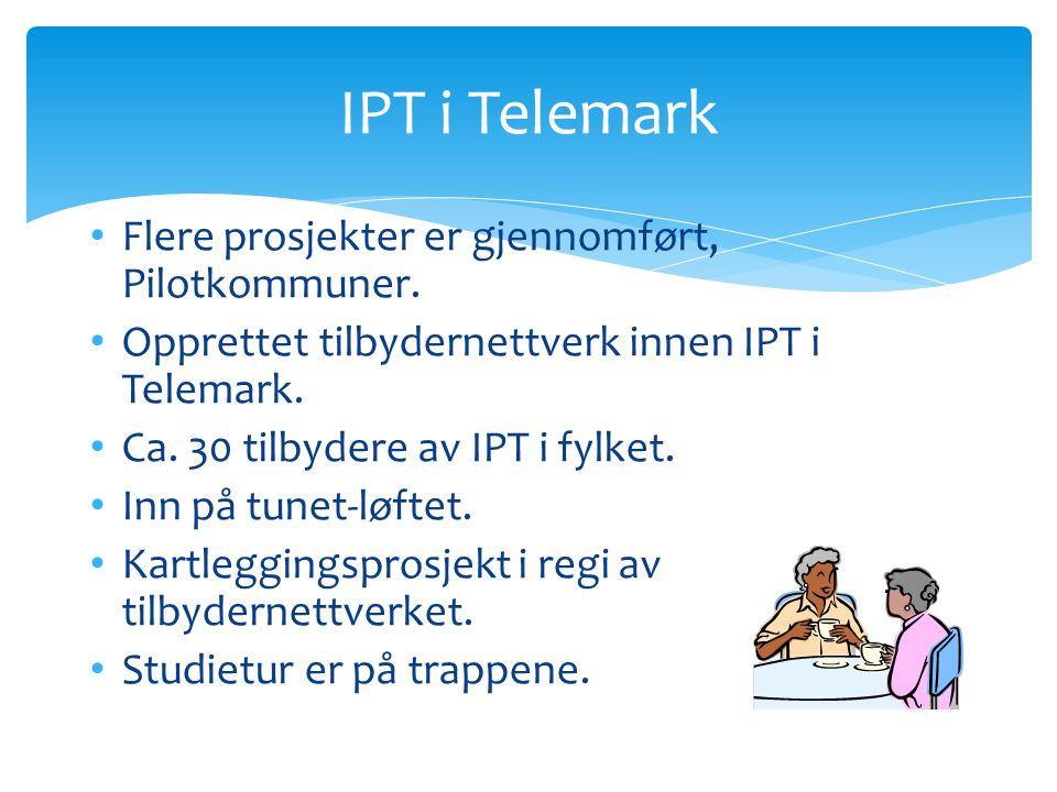 IPT i Telemark Flere prosjekter er gjennomført, Pilotkommuner.