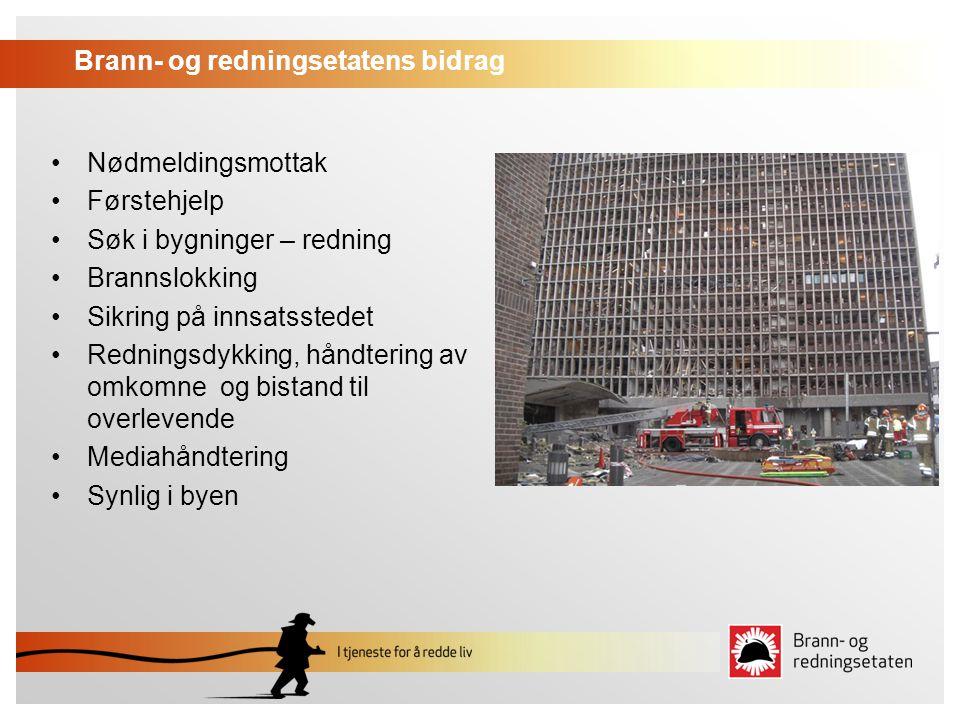 Brann- og redningsetatens bidrag