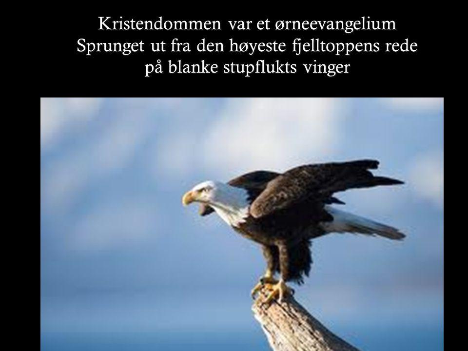 Kristendommen var et ørneevangelium Sprunget ut fra den høyeste fjelltoppens rede på blanke stupflukts vinger