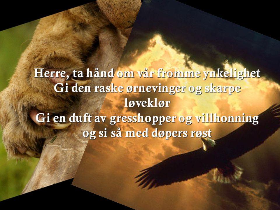 Herre, ta hånd om vår fromme ynkelighet Gi den raske ørnevinger og skarpe løveklør Gi en duft av gresshopper og villhonning og si så med døpers røst