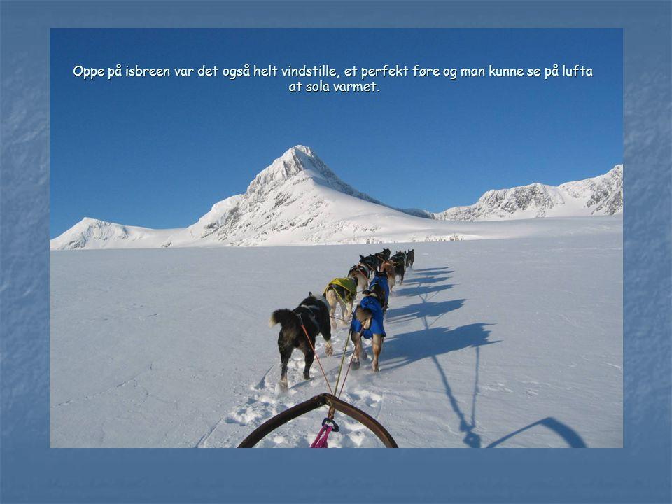 Oppe på isbreen var det også helt vindstille, et perfekt føre og man kunne se på lufta at sola varmet.