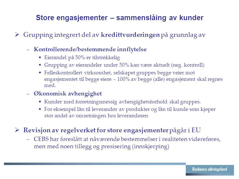 Store engasjementer – sammenslåing av kunder