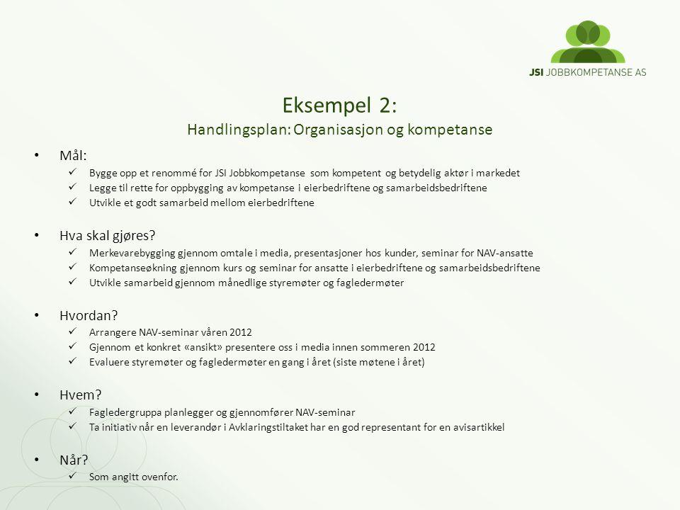 Eksempel 2: Handlingsplan: Organisasjon og kompetanse