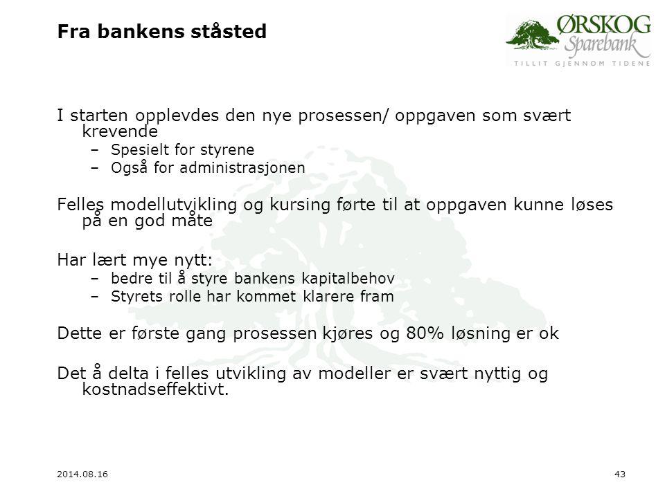 Fra bankens ståsted I starten opplevdes den nye prosessen/ oppgaven som svært krevende. Spesielt for styrene.