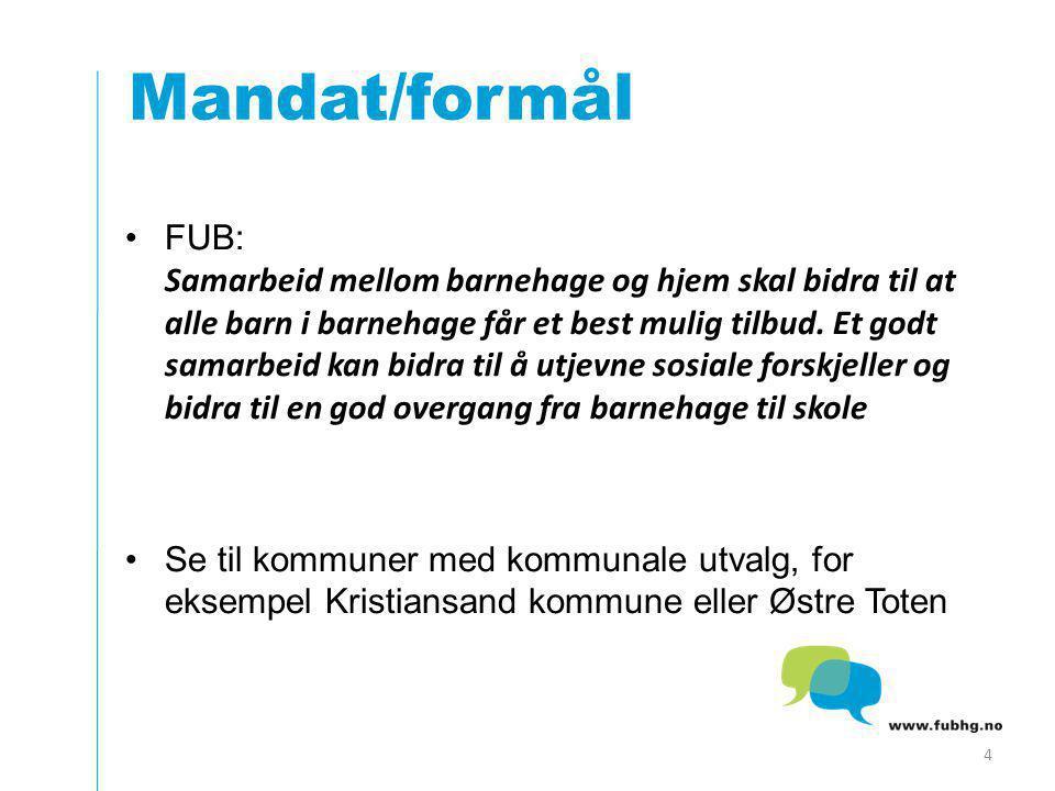 Mandat/formål