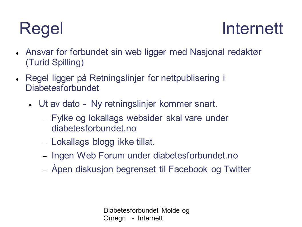 Internett Regel Internett. Ansvar for forbundet sin web ligger med Nasjonal redaktør (Turid Spilling)