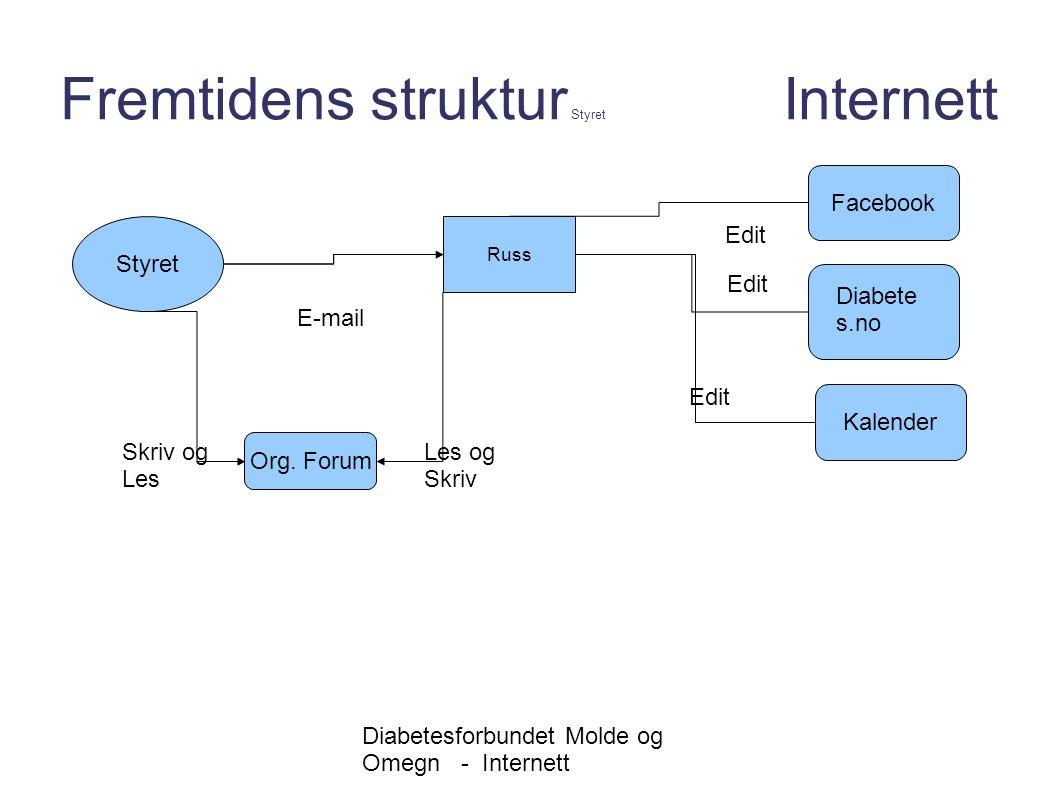 Fremtidens struktur Styret Internett
