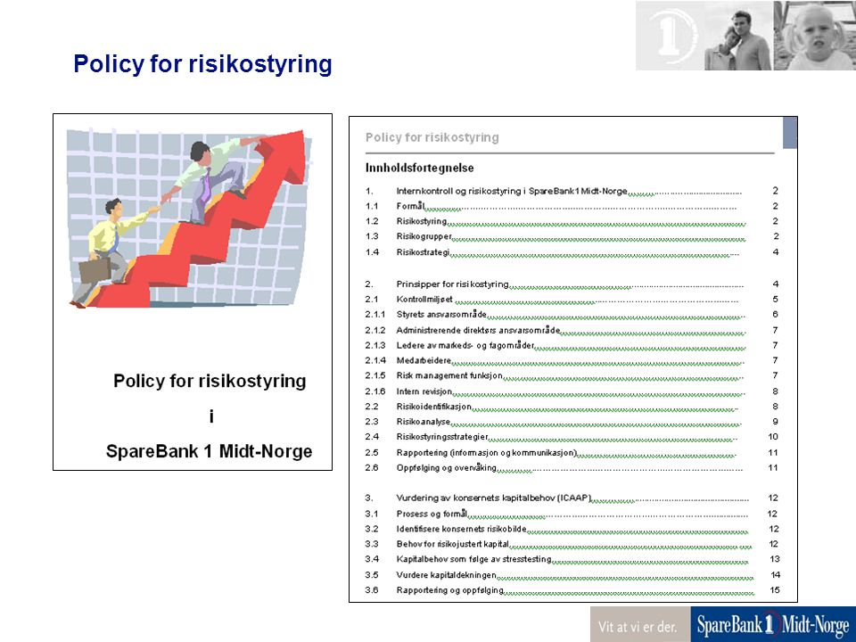 Policy for risikostyring