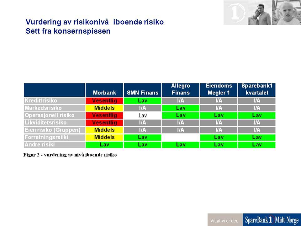 Vurdering av risikonivå iboende risiko Sett fra konsernspissen