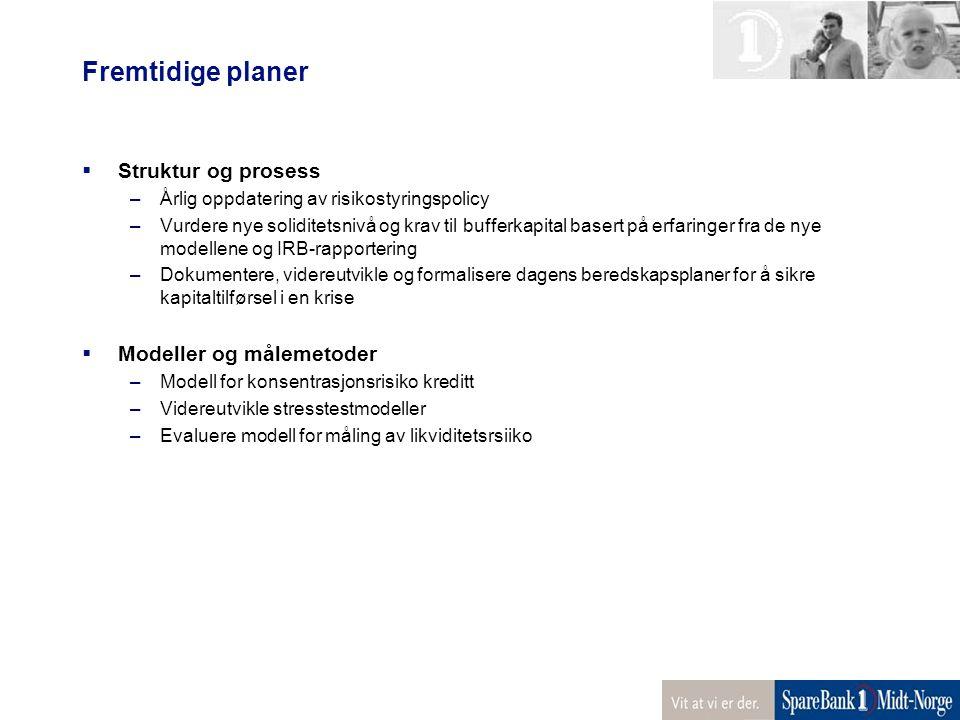 Fremtidige planer Struktur og prosess Modeller og målemetoder