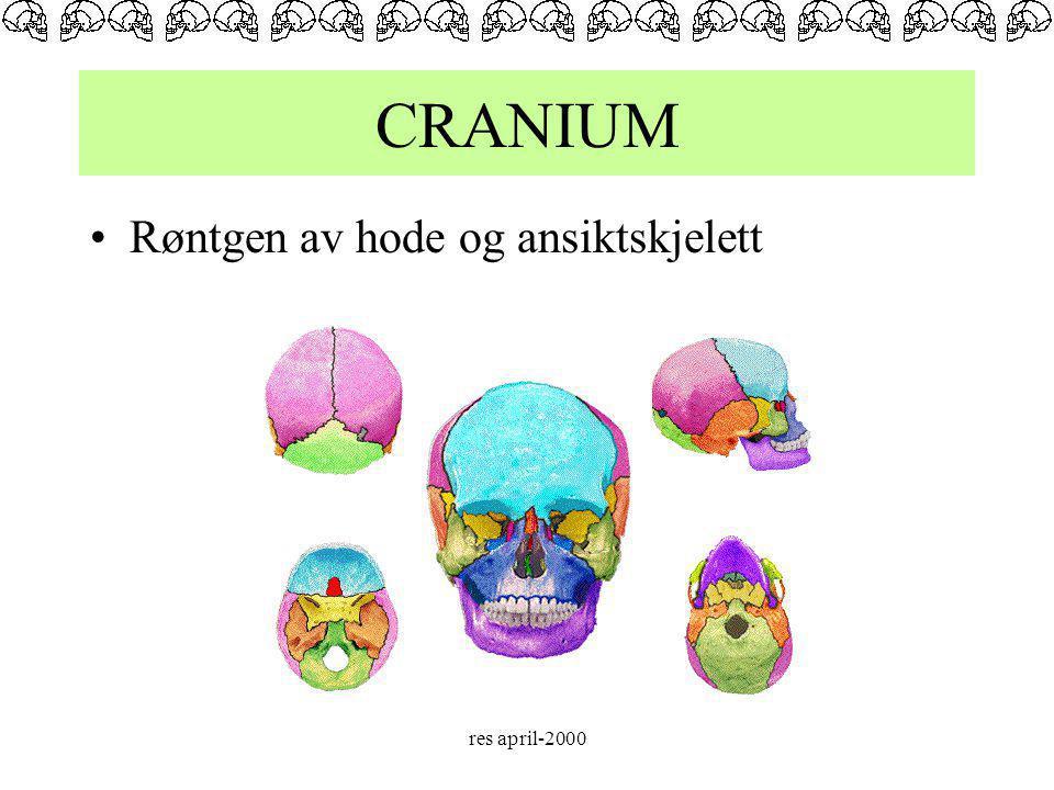 CRANIUM Røntgen av hode og ansiktskjelett res april-2000