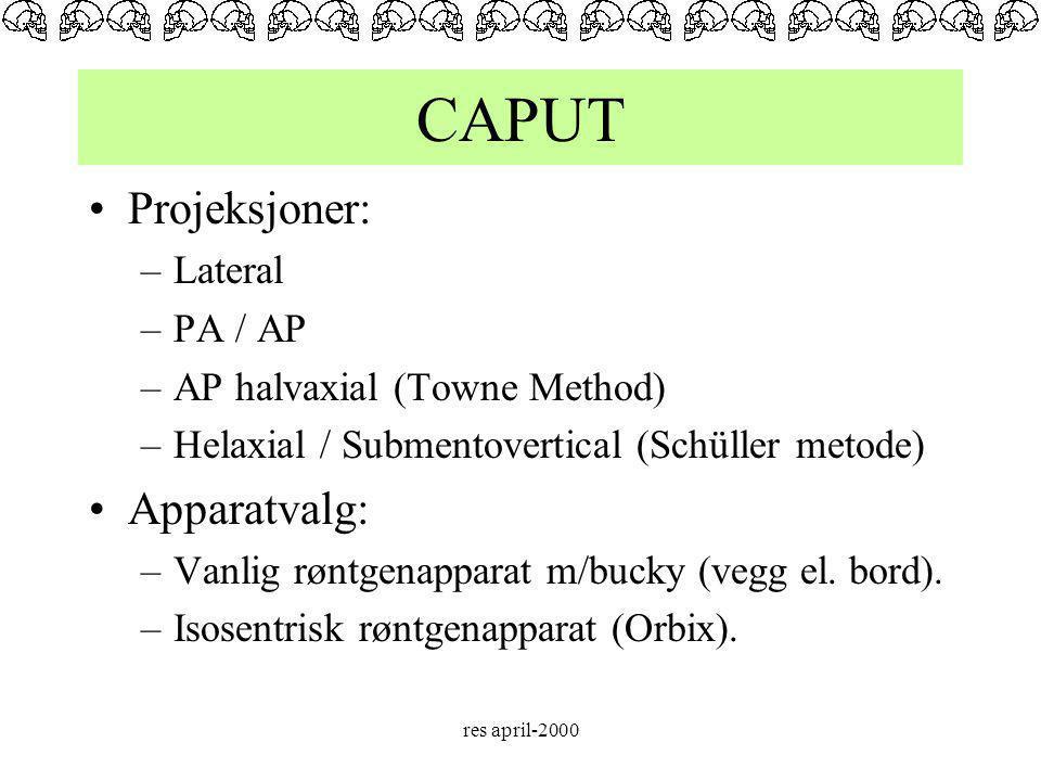 CAPUT Projeksjoner: Apparatvalg: Lateral PA / AP