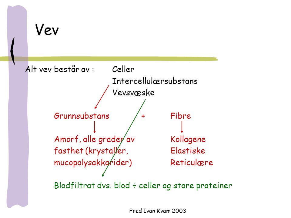 Vev Alt vev består av : Celler Intercellulærsubstans Vevsvæske