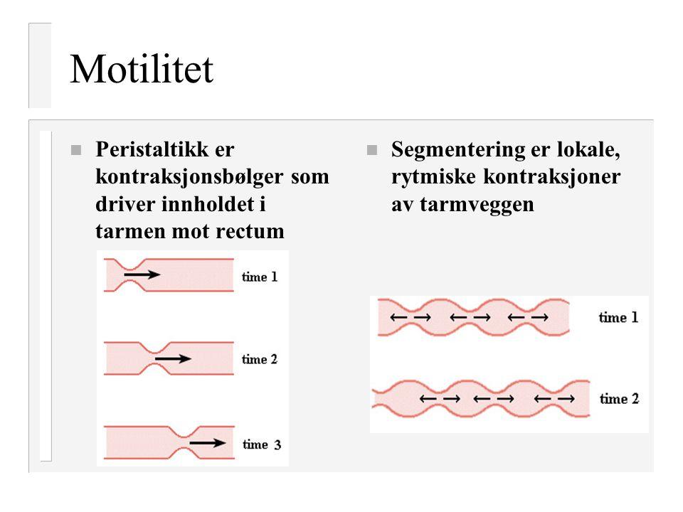 Motilitet Peristaltikk er kontraksjonsbølger som driver innholdet i tarmen mot rectum.
