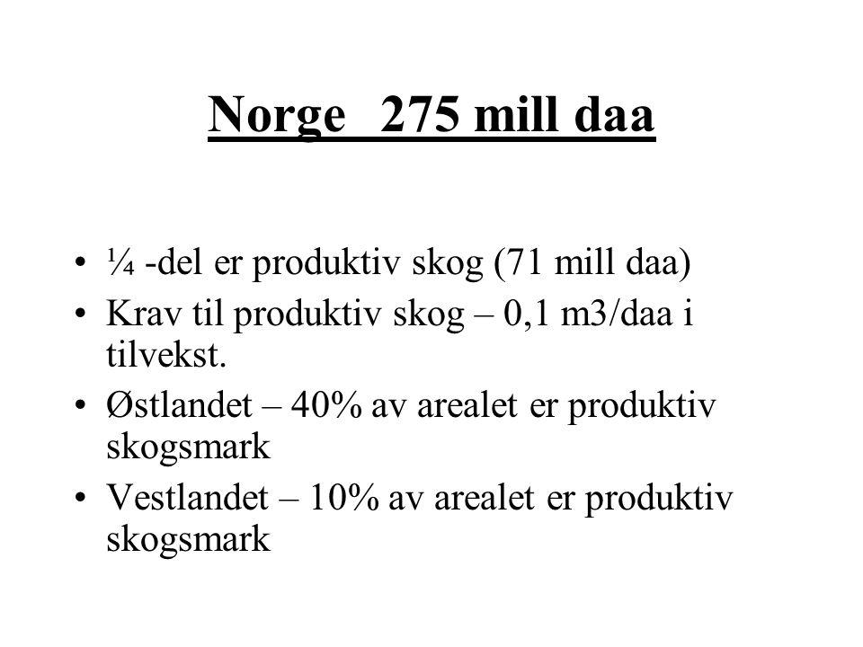 Norge 275 mill daa ¼ -del er produktiv skog (71 mill daa)