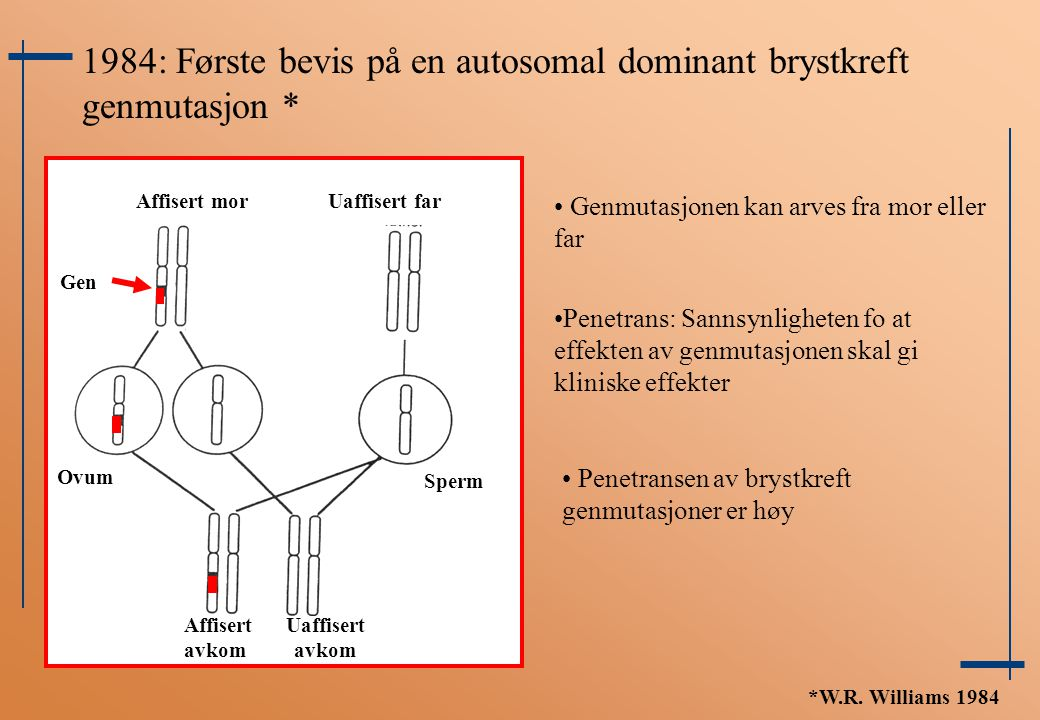 1984: Første bevis på en autosomal dominant brystkreft genmutasjon *