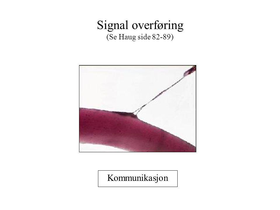 Signal overføring (Se Haug side 82-89)