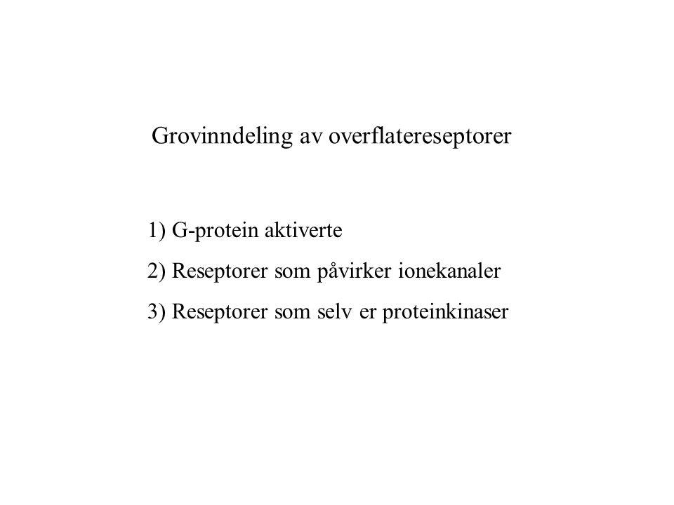 Grovinndeling av overflatereseptorer