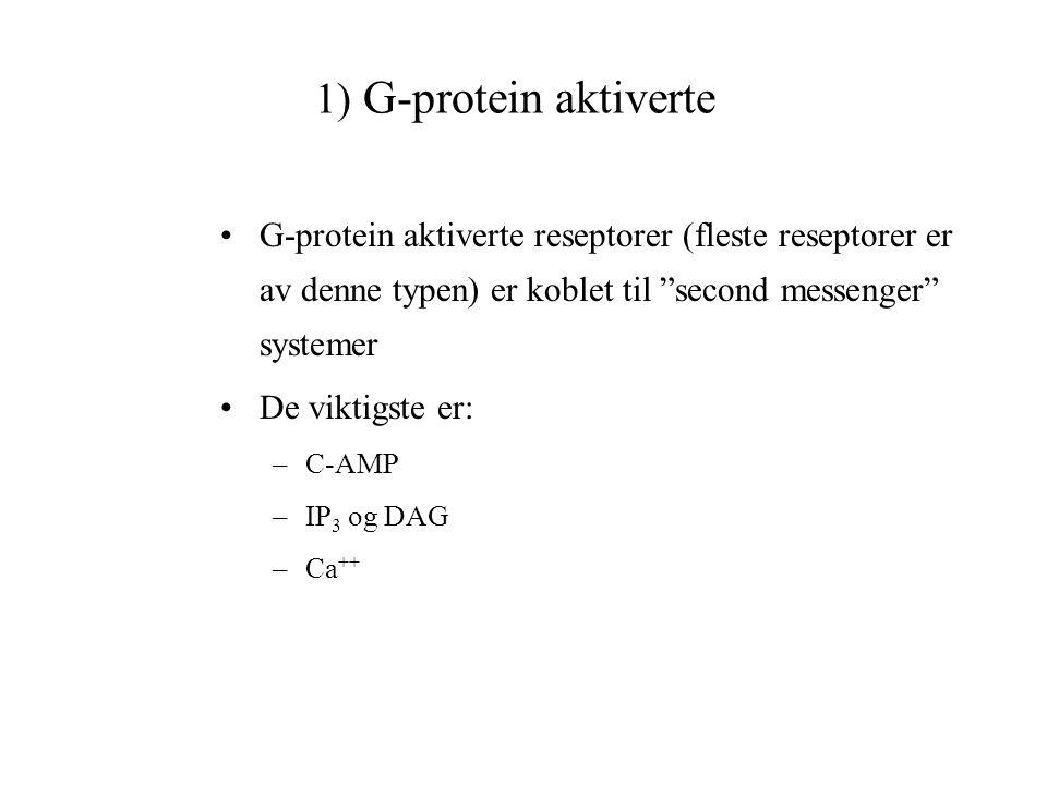 1) G-protein aktiverte G-protein aktiverte reseptorer (fleste reseptorer er av denne typen) er koblet til second messenger systemer.
