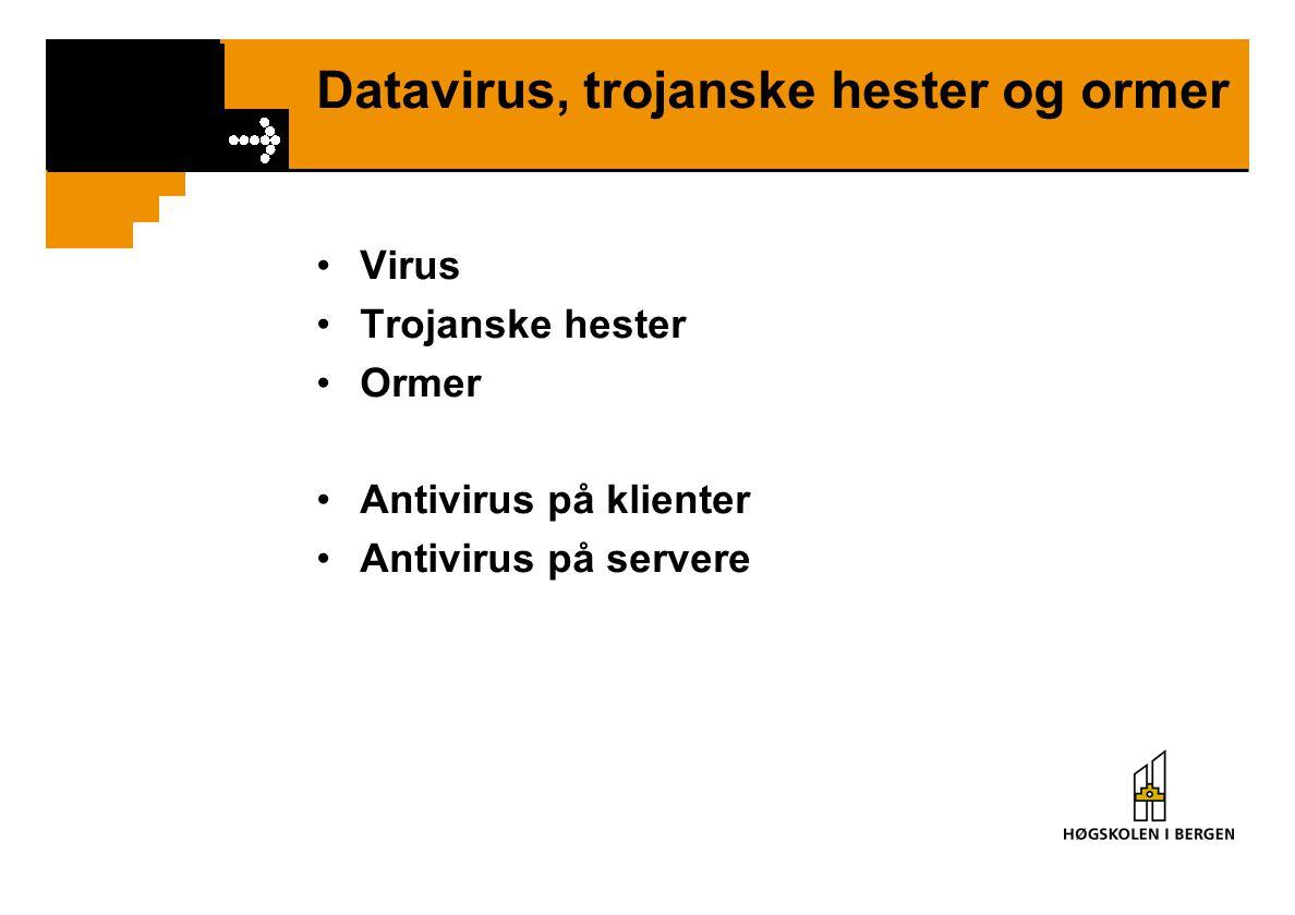 Datavirus, trojanske hester og ormer