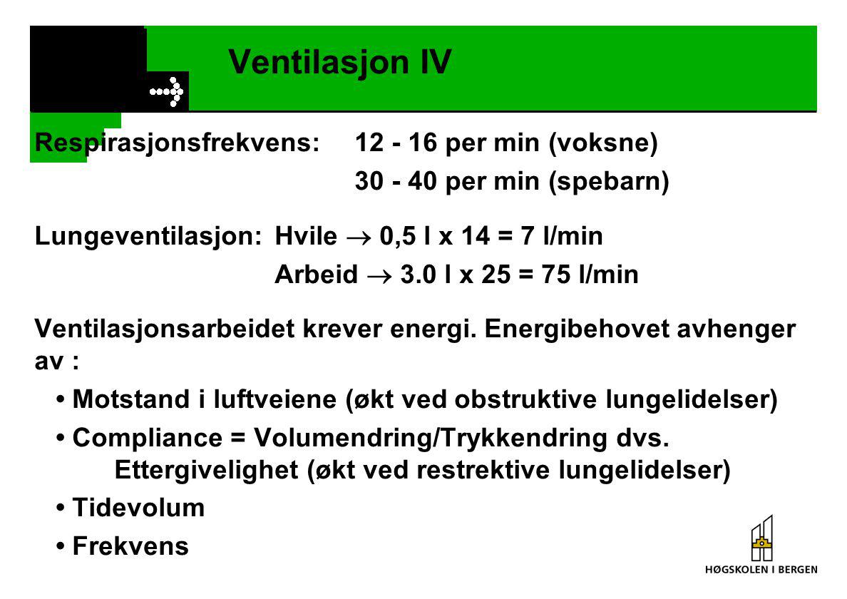 Ventilasjon IV Respirasjonsfrekvens: 12 - 16 per min (voksne)