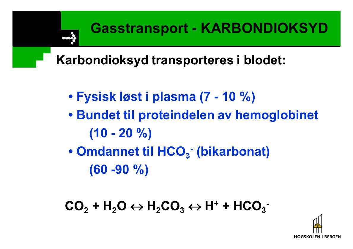 Gasstransport - KARBONDIOKSYD