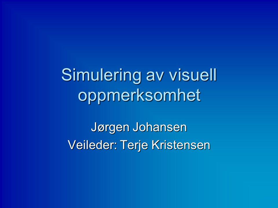 Simulering av visuell oppmerksomhet