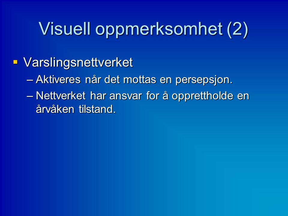 Visuell oppmerksomhet (2)