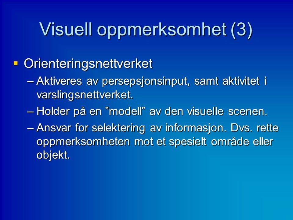 Visuell oppmerksomhet (3)
