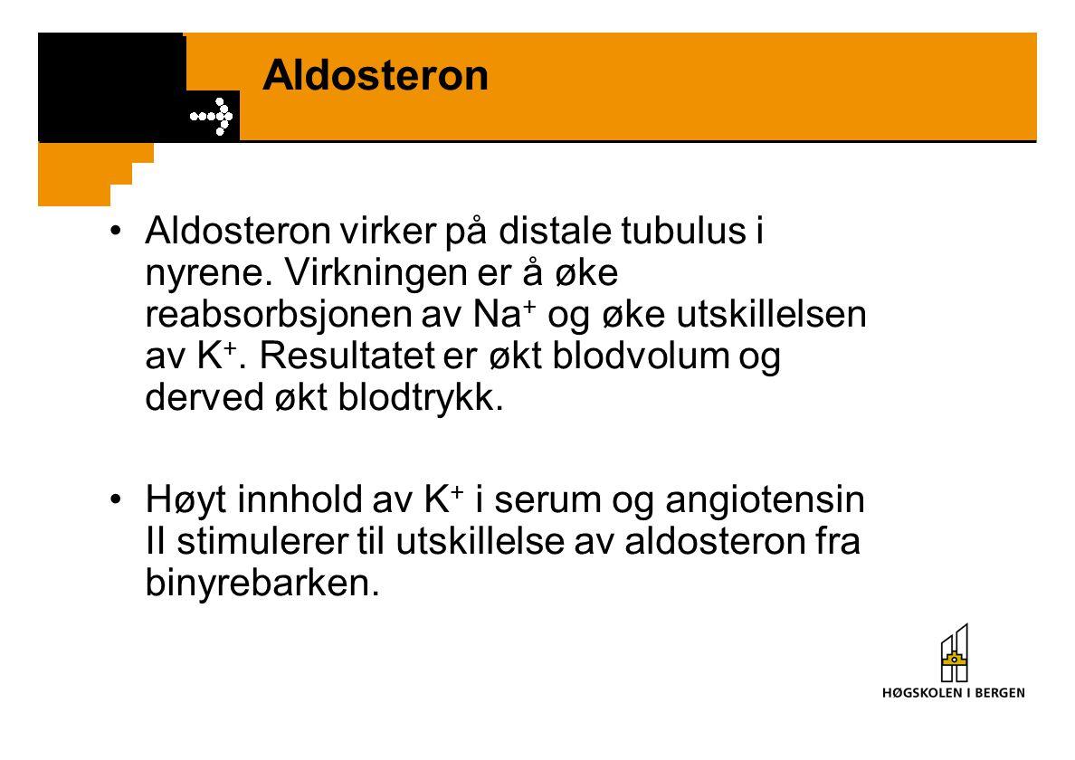Aldosteron