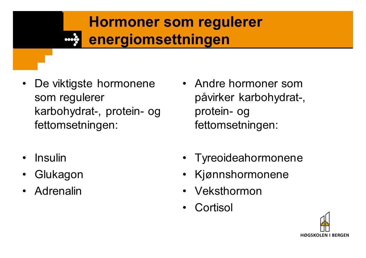 Hormoner som regulerer energiomsettningen