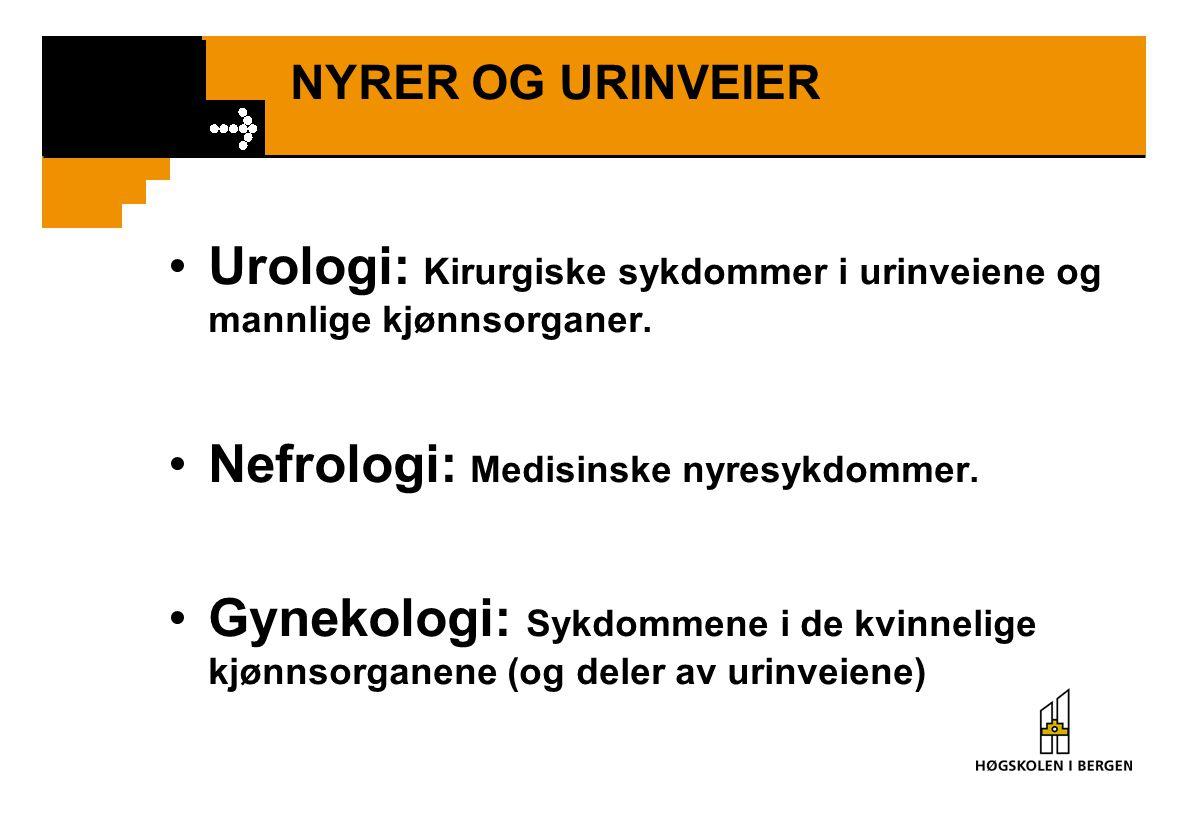 Urologi: Kirurgiske sykdommer i urinveiene og mannlige kjønnsorganer.