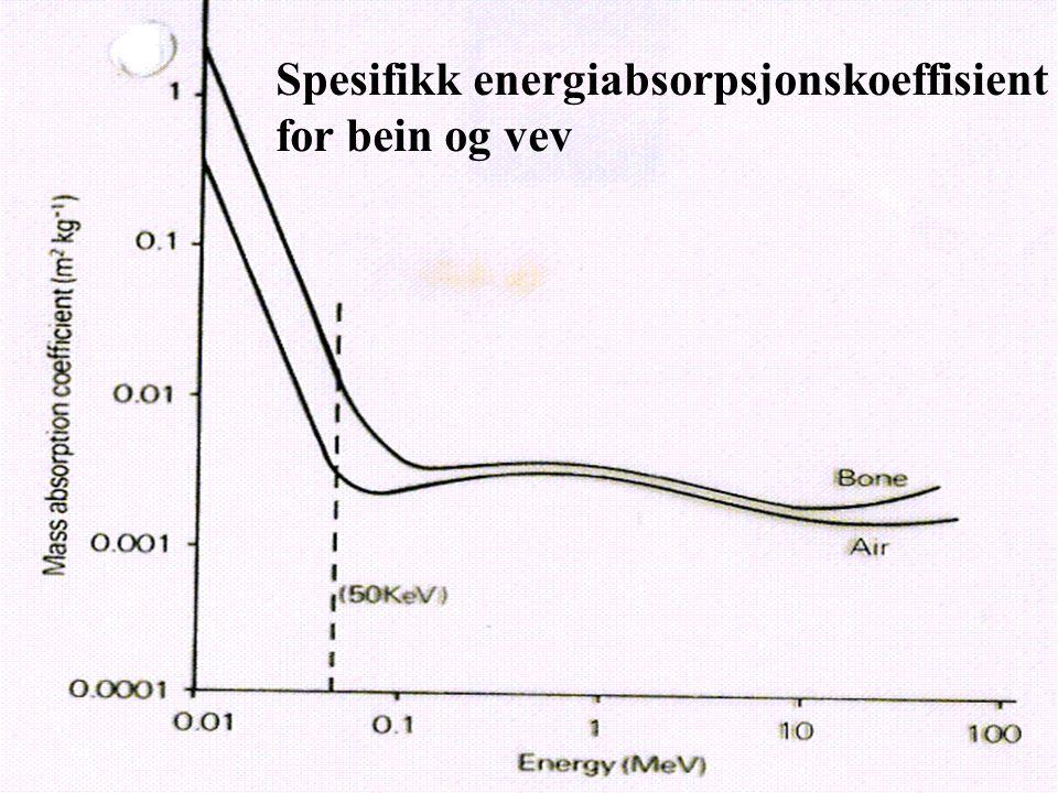 Spesifikk energiabsorpsjonskoeffisient
