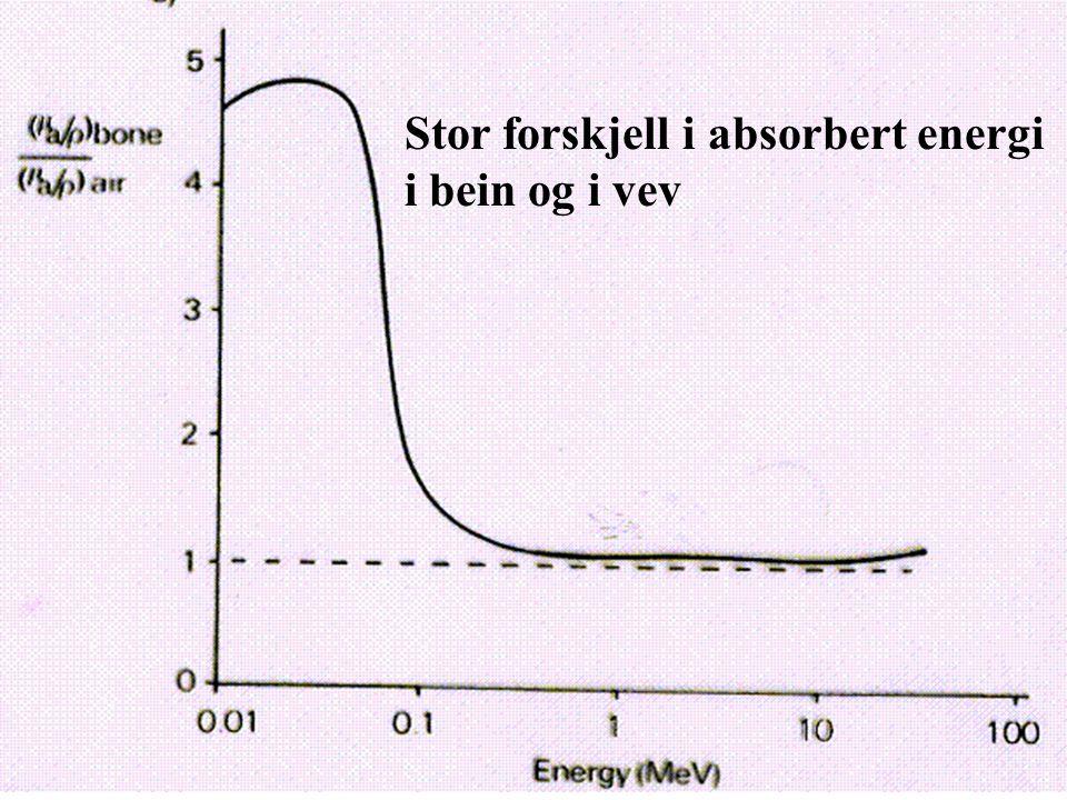 Stor forskjell i absorbert energi