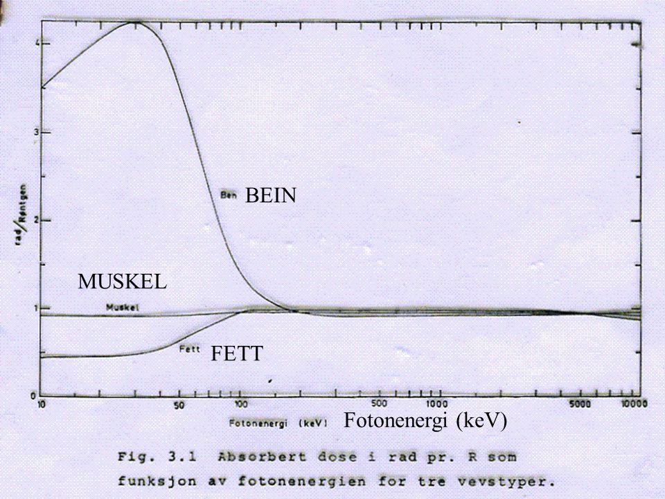BEIN MUSKEL FETT Fotonenergi (keV)