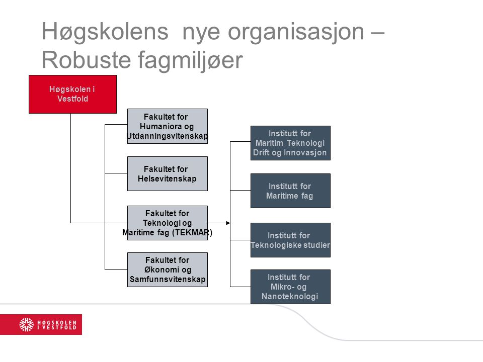 Høgskolens nye organisasjon – Robuste fagmiljøer