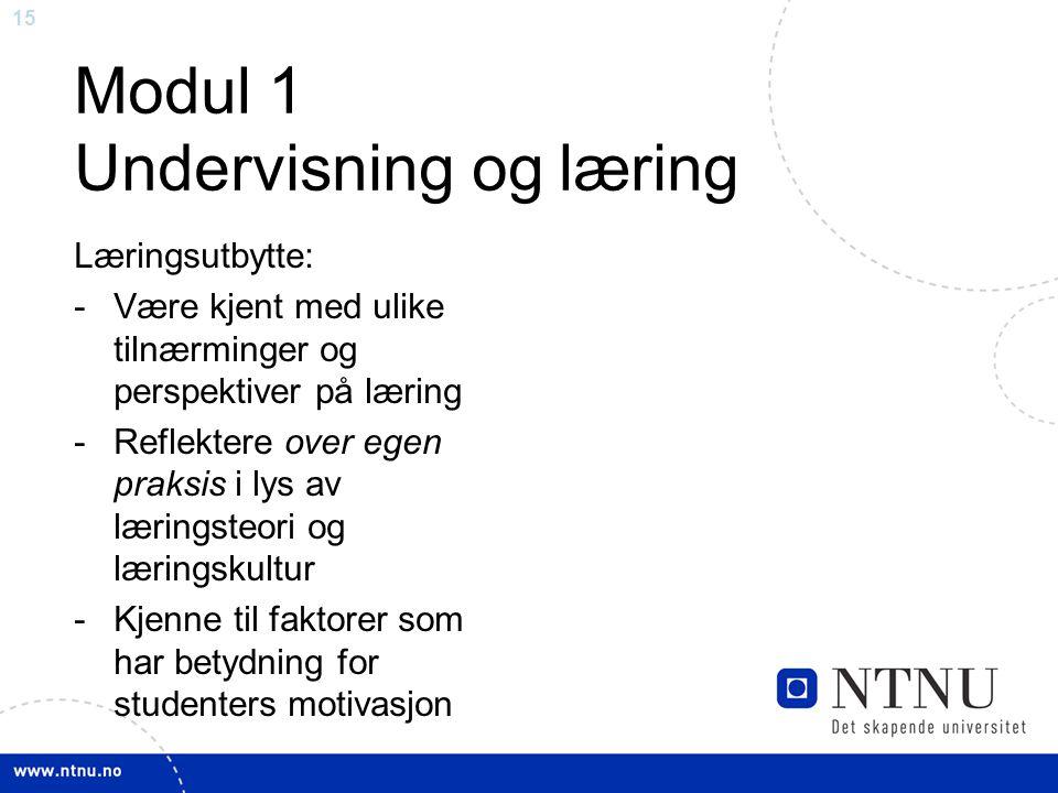 Modul 1 Undervisning og læring