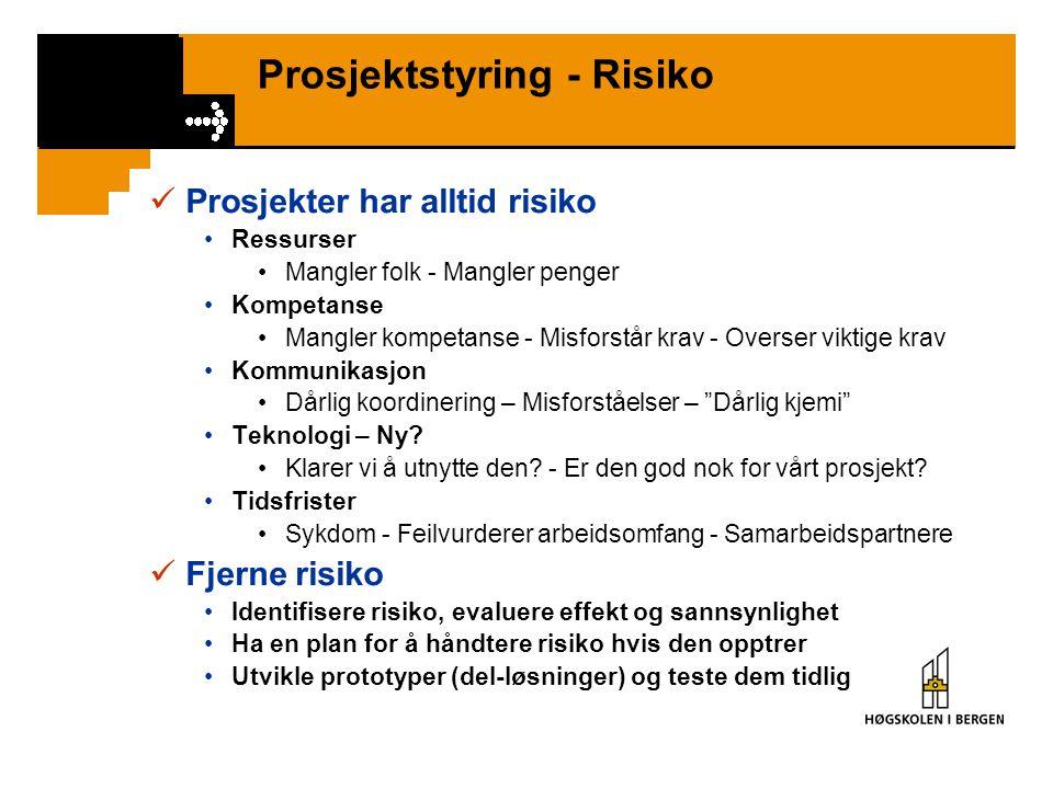 Prosjektstyring - Risiko