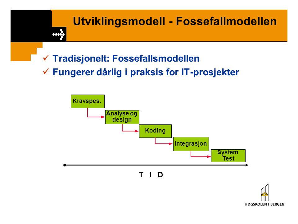 Utviklingsmodell - Fossefallmodellen