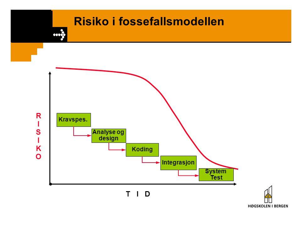 Risiko i fossefallsmodellen