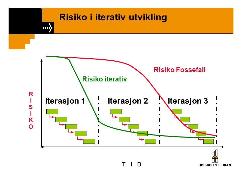 Risiko i iterativ utvikling