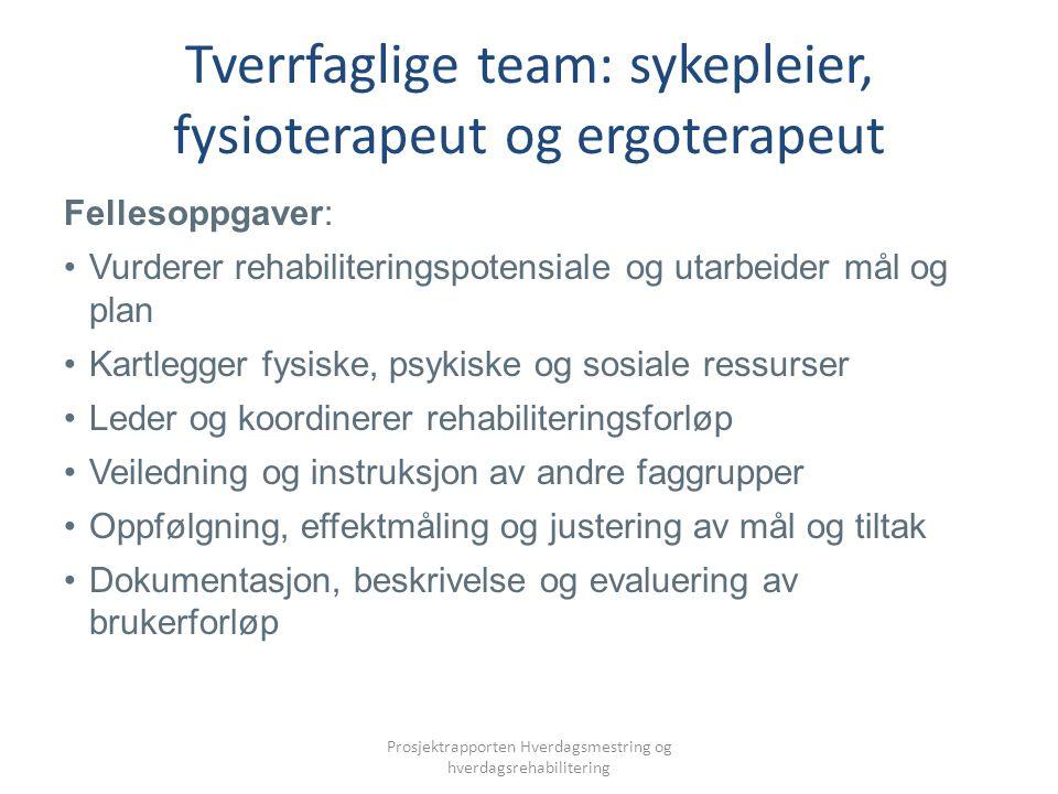 Tverrfaglige team: sykepleier, fysioterapeut og ergoterapeut