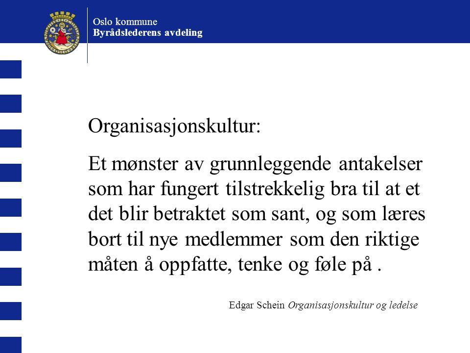 Organisasjonskultur: