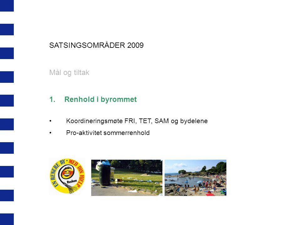 SATSINGSOMRÅDER 2009 Mål og tiltak Renhold i byrommet