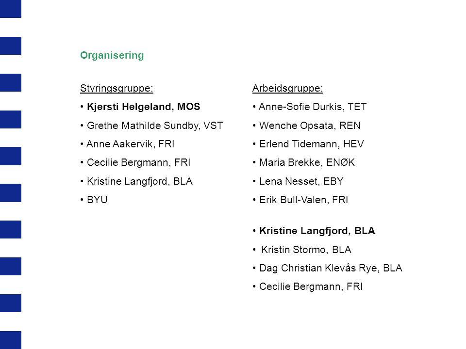 Organisering Styringsgruppe: Kjersti Helgeland, MOS. Grethe Mathilde Sundby, VST. Anne Aakervik, FRI.