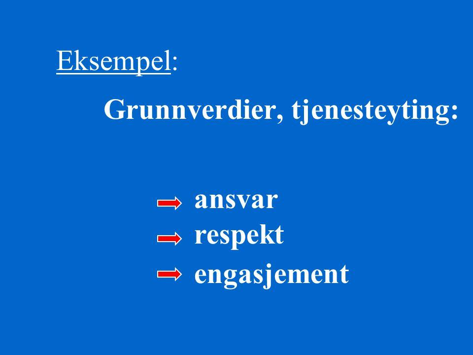 Eksempel: Grunnverdier, tjenesteyting: