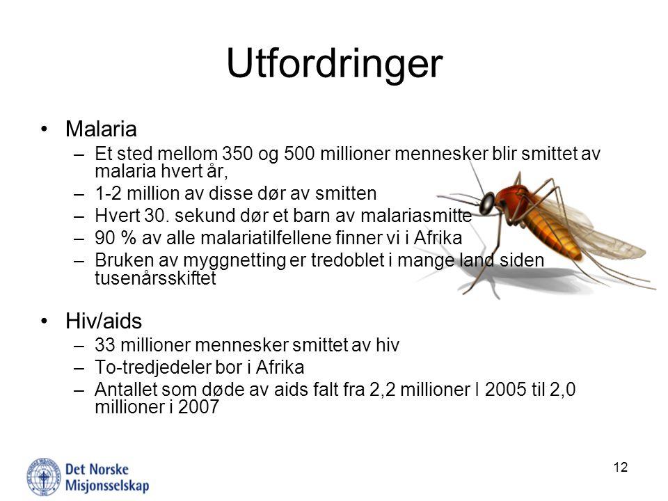 Utfordringer Malaria Hiv/aids