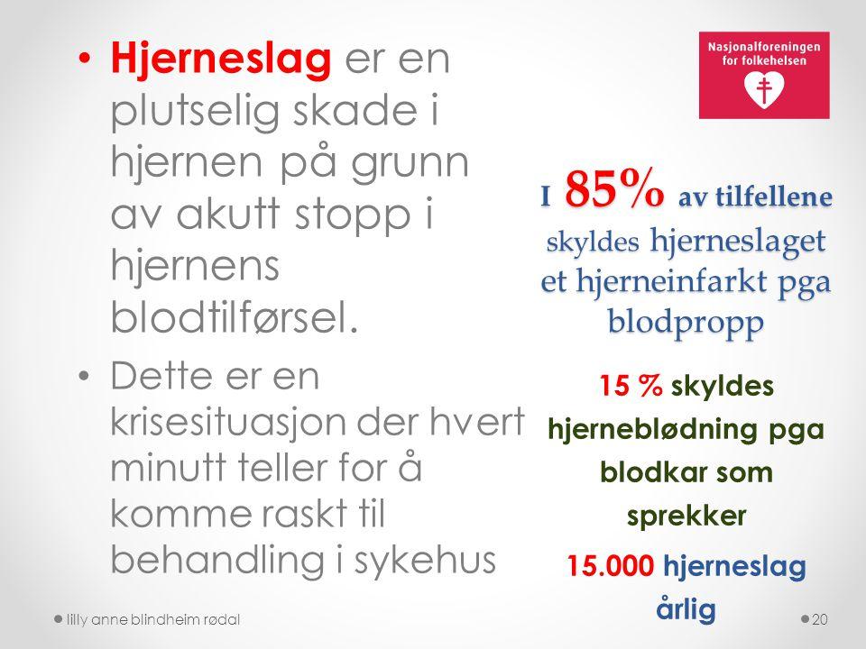 15 % skyldes hjerneblødning pga blodkar som sprekker