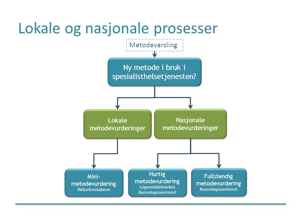 Lokale og nasjonale prosesser